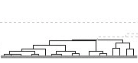 A dendrogram, showing clusters of software test failures